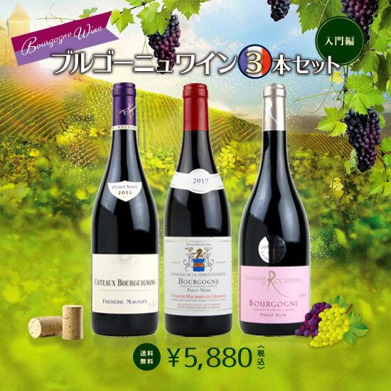 本格派ブルゴーニュ赤ワイン3本セット 《入門編》 【送料無料】