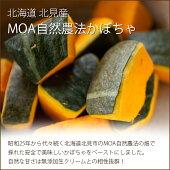 北海道産エビスかぼちゃ