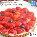イチゴがどっさり!いちごベリベリータルト無添加カスタードクリーム苺バースデーケーキ・誕生日ケーキ【楽ギフ_のし…