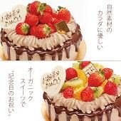 カラダに優しい自然素材のデコレーションケーキ♪