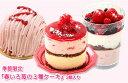 期間限定『苺の3種ケーキ』3個入春のギフトに 北海道スイーツ