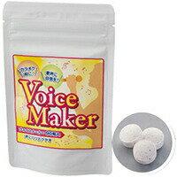 ヴォイスメーカーカラオケ ヴォイスメーカー voicemaker サプリ サプリメント マグネシウム リンゴ[メール便対応商品]