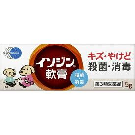 【第3類医薬品】イソジン軟膏 5g皮膚の薬 乾皮症 乾燥によるかゆみ 軟膏 イソジン