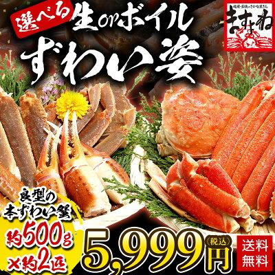 生かボイルか選べる!極上姿ずわい蟹約500g×約2匹ズワイ蟹ずわいがにズワイガニ