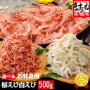 【お刺身用】生白えび500g(台湾産)[送料無料]【白エビ/しろえび】