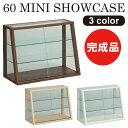 コレクションケース コレクションボード キュリオケース ガラスケース ショーケース ガラス 幅60cm 高さ46cm リビング…