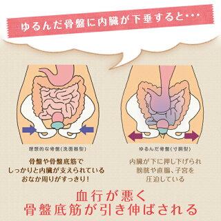トコちゃんベルト2(Lサイズ)【送料無料】【8AMまで当日出荷】腰痛、妊娠産前産後の骨盤のゆるみ・歪みの矯正に。産後の体系戻し、ダイエットも、とこちゃんベルト2【楽ギフ_包装選択】