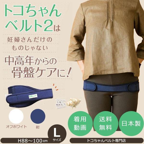 青葉 トコちゃんベルト2 腰痛ベルト 紺/オフホワイト Lサイズ