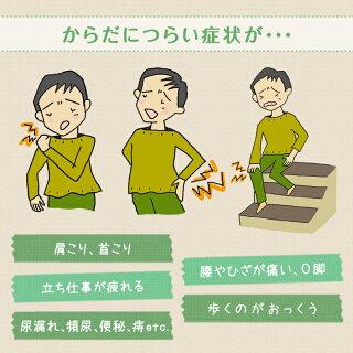 トコちゃんベルト2(Lサイズ)腰痛妊活О脚内臓下垂に骨盤ケア、ダイエットにも