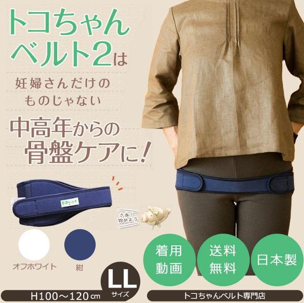 青葉 トコちゃんベルト2 腰痛ベルト 紺/オフホワイト LLサイズ
