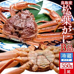 かに 訳あり 松葉がに[B品]中550g 活ガニ 生き蟹 松葉蟹 鳥取県産 通販直送 マツバガニ わけあり 日本海ズワイガニ