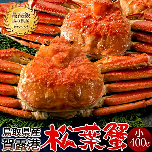 かに 松葉がに【新物予約】 中小400g×2尾セット 浜ゆで松葉蟹 ゆでがに 鳥取県産 通販直送 ブランド マツバガニ 日本海ズワイガニ お歳暮