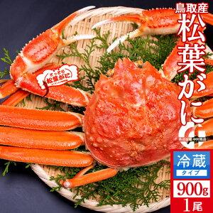 かに 松葉がに【新物予約】 特大900g 浜ゆで松葉蟹 ゆでがに 鳥取県産 通販直送 ブランドタグ付きマツバガニ 日本海ズワイガニ お歳暮