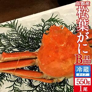かに 訳あり 松葉がに[B品]中550g 浜ゆで松葉蟹 ゆでがに 鳥取県産 通販直送 マツバガニ わけあり 日本海ズワイガニ