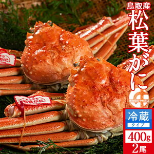 かに 松葉がに 中小400g×2尾セット 浜ゆで松葉蟹 ゆでがに 鳥取県産 通販直送 ブランドタグ付きマツバガニ 日本海ズワイガニ