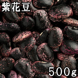紫花豆 (紫花いんげん) (500g) 令和元年産北海道産 【メール便対応】