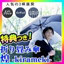 折り畳み傘 煌 kirameki 男性傘 超小型185g 雨傘 軽量傘 メンズ傘 男の雨傘 紳士傘 雨傘 折りたたみ傘 煌めき 折畳傘 折りたたみ傘消