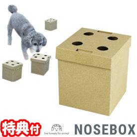 ノーズボックス 10個入 嗅覚で探す犬のおもちゃ ペット用玩具 犬 ドッグ イヌ 訓練 トレーニング しつけ 練習 教育 ニオイあて ワンちゃん NOSEBOX あ