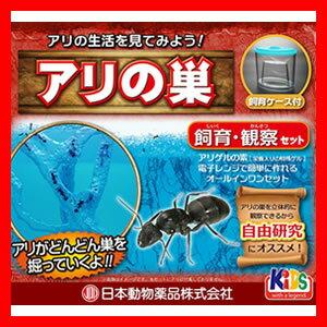 アリの巣 飼育観察セット アリ観察セット アリ飼育セット あり飼育キット アリ飼育セット アリの巣を観察できます インテリアオブジェに アリ観察 自由研究 アリ観察キット アリ伝説 姉妹品 蟻の巣