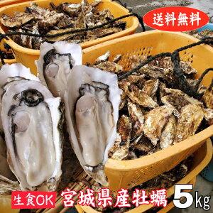 殻付き牡蠣 産地直送 宮城県産 5kg 生食用 送料無料 旬 活 かき 生ガキ 松かき