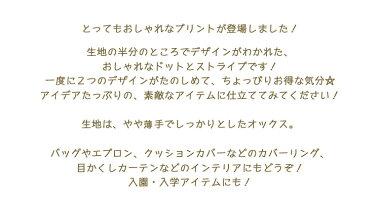 **ハーフ&ハーフ**『ドット☆ストライプ』≪オックスプリント≫※108cm幅コットン100%