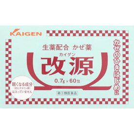 【第(2)類医薬品】カイゲン 改源 60包
