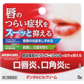 【第(2)類医薬品】森下仁丹 デンタルピルクリーム 5g