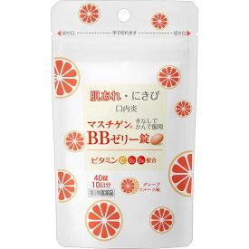 【第3類医薬品】日本臓器製薬 マスチゲン BBゼリー錠 40錠