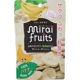 テクセルジャパン ミライフルーツ バナナ 12g