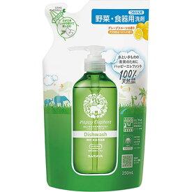 サラヤ ハッピーエレファント 野菜・食器用洗剤 リフレッシュ つめかえ用 250ml