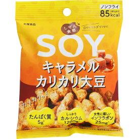 大塚食品 しぜん食感SOY キャラメルカリカリ大豆 21g