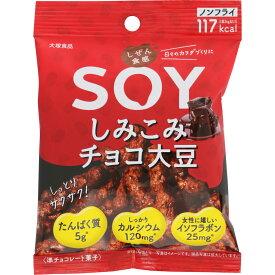 大塚食品 しぜん食感SOY しみこみチョコ大豆 24g