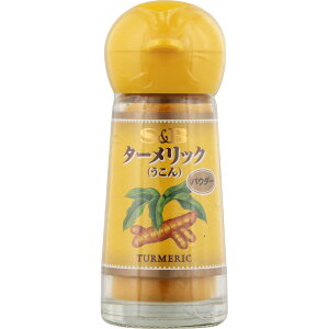 ヱスビー食品 ターメリック(パウダー) 14g