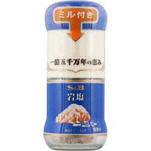 ヱスビー食品 ミル付き岩塩 40g