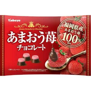 カバヤ食品 あまおう苺チョコレート 155g