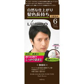 マンダム ルシード ワンプッシュケアカラー 6 ダークブラウン 1剤50g・2剤50g (医薬部外品)
