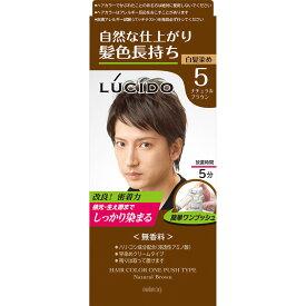 マンダム ルシード ワンプッシュケアカラー 5 ナチュラルブラウン 1剤50g・2剤50g (医薬部外品)