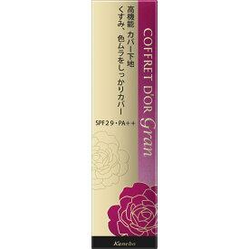 カネボウ化粧品 コフレドール グラン カバーフィットベースUV 25g