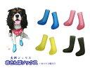 おさんぽソックス(1セット2個入り)犬用シューズ 犬 犬用 靴 靴下 ソックス 肉球 保護  肉球保護 ドッグシ…