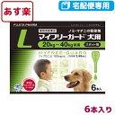 【B】【動物用医薬品】マイフリーガード犬用L(20〜40kg)2.68ml×6個ピペット【あす楽対応】