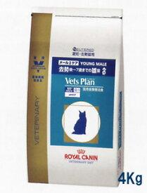 【C】ロイヤルカナンベッツプラン猫用 メールケア 4kg【あす楽対応】