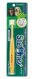 【C】【1,000円OFFクーポン】VIVATEC シグワン 小型犬用歯ブラシ【10/23(金)10:00〜23:59】