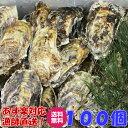 あす楽対応!牡蠣 100個 宮城県産 殻付き 牡蠣 殻付き 牡蠣 殻付 送料無料1個牡蠣 加熱用 かきカキkaki 一粒牡蠣 松島…