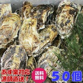 あす楽対応!牡蠣 送料無料!50個 宮城県産 殻付き 牡蠣 殻付き 牡蠣 殻付 1個牡蠣 牡蛎 加熱用 かきカキkaki 一粒牡蠣 松島牡蠣屋 BBQ 母の日 父の日