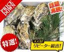 あす楽対応!GW休みなし!チルド便送料無料!20個 日本三景松島産 殻付き牡蠣殻付き 殻付き1個牡蠣 加熱用 かきカキkaki チルド便配送