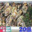 あす楽対応!牡蠣 クール便送料無料!20個 宮城県産 殻付き 牡蠣 殻付き 牡蠣 殻付 1個牡蠣 加熱用 かきカキkaki 一粒…