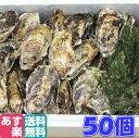あす楽対応!牡蠣 クール送料無料!50個 宮城県産 殻付き 牡蠣 殻付き 牡蠣 殻付 1個牡蠣 加熱用 かきカキkaki 一粒牡…