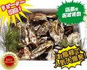 あす楽対応!10kgチルド便送料無料! 宮城県松島産 殻付き牡蠣 殻付き 無選別牡蠣 殻付 カキ 加熱用 一年子
