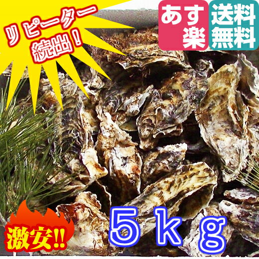 あす楽対応!5kg(約55粒)送料無料! 宮城県産 殻付き牡蠣 殻付き 無選別牡蠣 殻付 カキ 加熱用 一年子 松島牡蠣屋