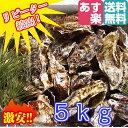 あす楽対応!牡蠣 5kg(約55粒)送料無料!宮城県産 殻付き 牡蠣 殻付き 無選別牡蠣 牡蠣 殻付 カキ 加熱用 一年子 松島牡蠣屋